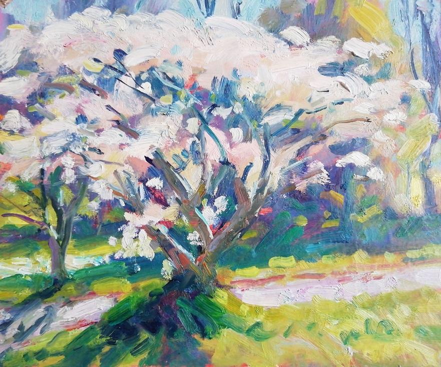 'Apple Blossoms I', oil on board, 26cm x 30cm, £850 Unframed
