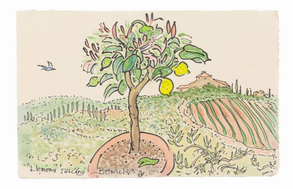 'Lemons Tuscany' 2016 Watercolour 36cm x 43cm - £1,600